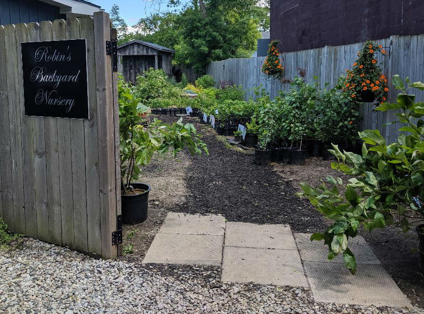Entrance through open gate to Robin's Backyard Nursery with potted plants in the background
